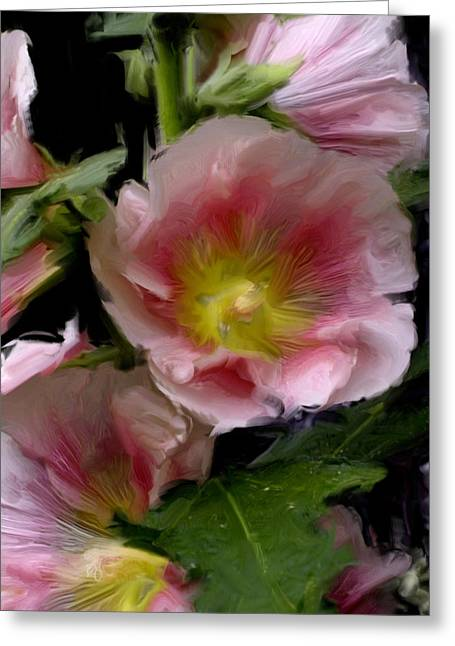 Hollyhock Heaven Greeting Card
