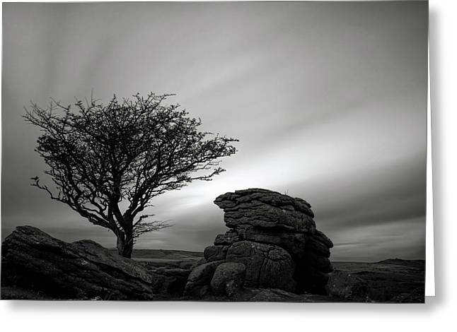 Holwell Tor And Lone Tree On Dartmoor Greeting Card by Pete Hemington