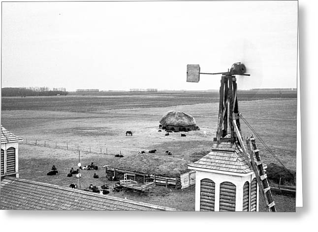 Homemade Wind Powered Electricity Generator 1920's Greeting Card by Donald  Erickson