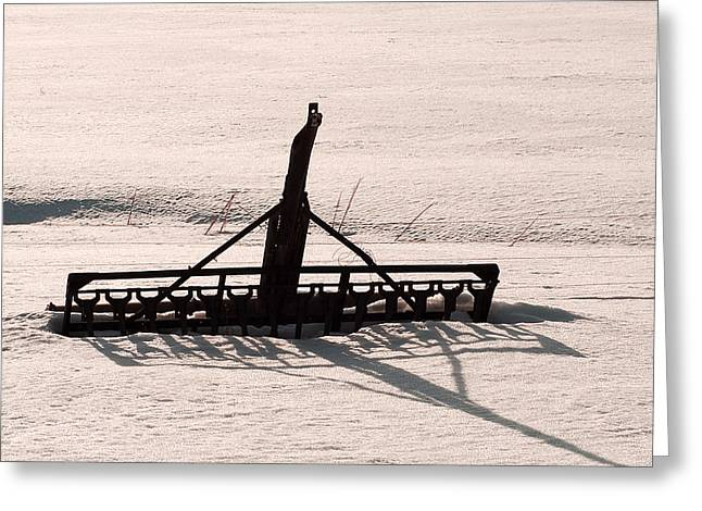 Greeting Card featuring the photograph Horse Drawn Seed Driller by Daniel Hebard