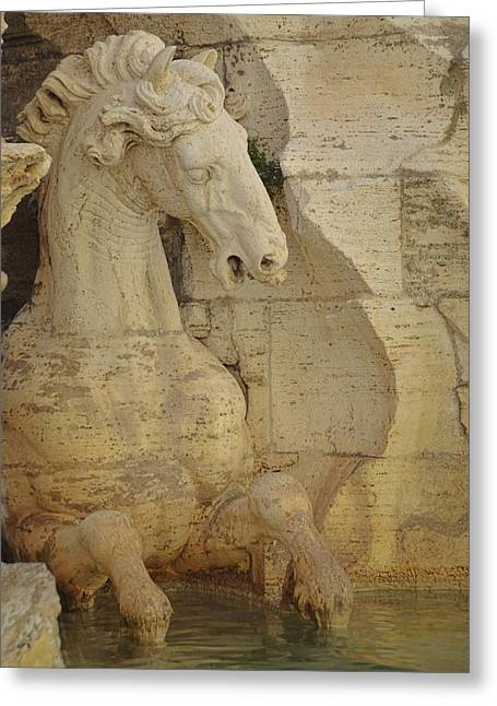 The Horse In The Fountain  Greeting Card by JAMART Photography