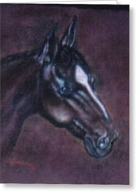 Horse Portrait Greeting Card by  Gayle  Hartman