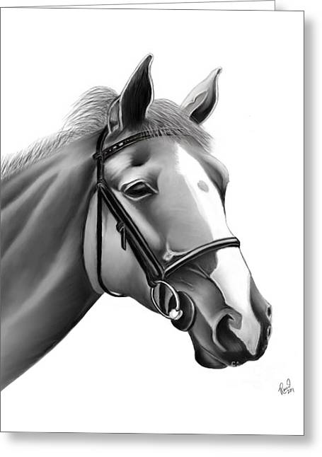 Horse Greeting Card by Rand Herron