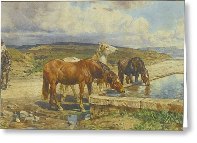 Horses Drinking From A Stone Trough Greeting Card