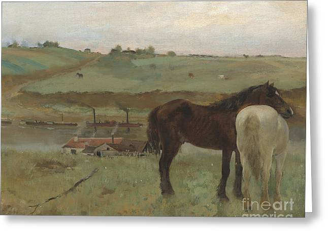 Horses In A Meadow Greeting Card