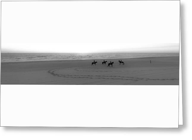 Race Horse Greeting Cards - Horses on the beach Greeting Card by Alex Hiemstra