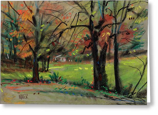 House Across The Creek Greeting Card by Donald Maier