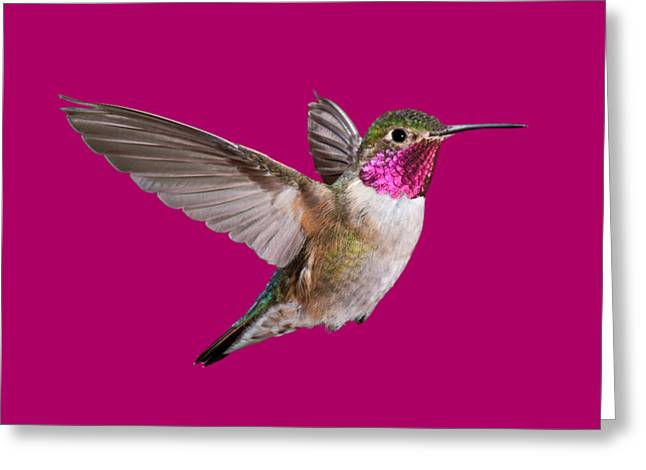 Hummer All Items Greeting Card