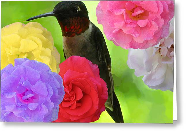 Hummingbird Flower Greeting Card by Debra     Vatalaro