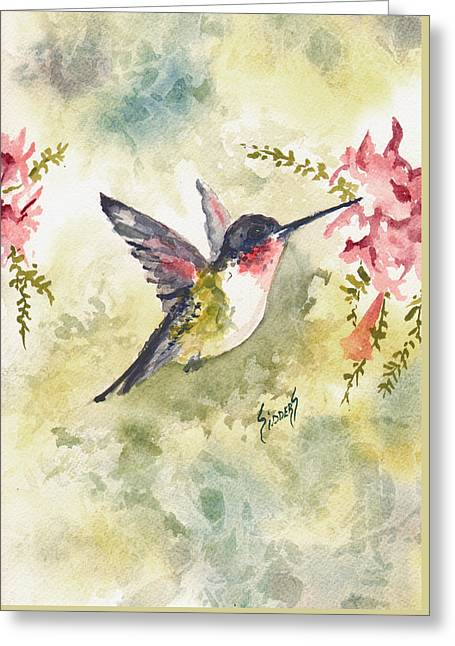 Hummingbird Greeting Card by Sam Sidders