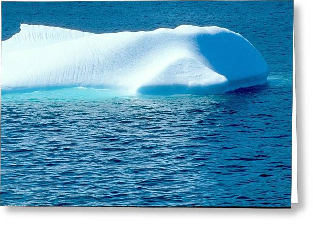 Greeting Card featuring the photograph Iceberg by Douglas Pike