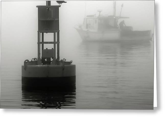 In The Midst Of A Fog Greeting Card by Richard Bean