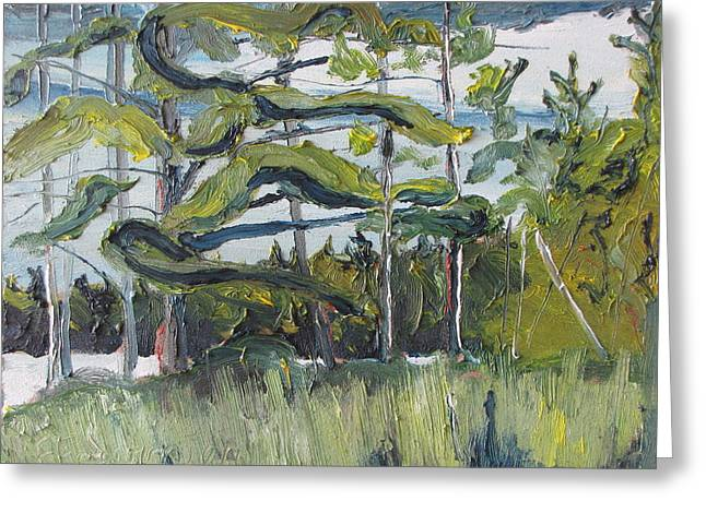 In The Woods Greeting Card by Francois Fournier