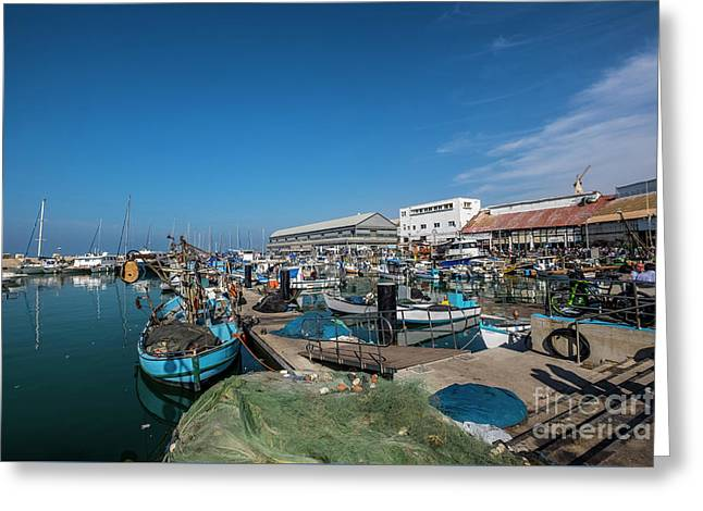 Israel, Jaffa, The Ancient Port  Greeting Card by Ofer Zilberstein