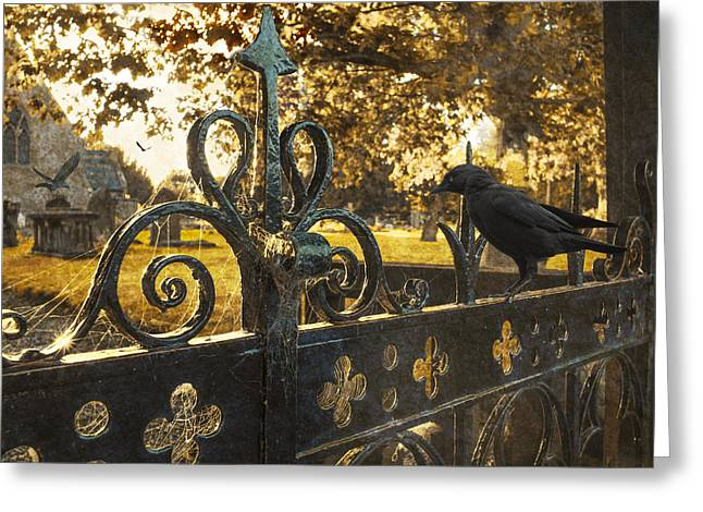 Funeral Greeting Cards - Jackdaw On Church Gates Greeting Card by Amanda And Christopher Elwell