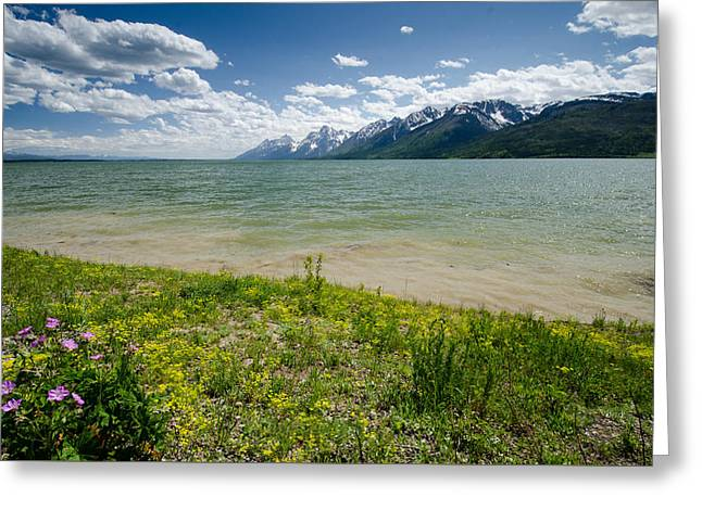 Jackson Lake Greeting Card