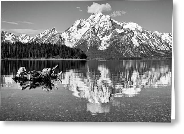 Jackson Lake, Gtnp  Greeting Card