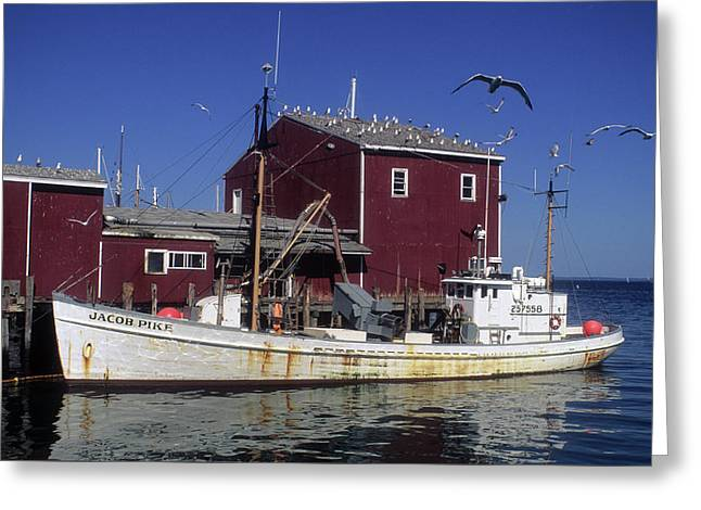 Jacob Pike Fishing Boat In Maine Greeting Card by Carl Purcell