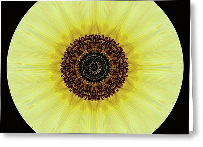 Greeting Card featuring the photograph Kaleidoscope Image Of An Italian Sunflower by Brenda Jacobs
