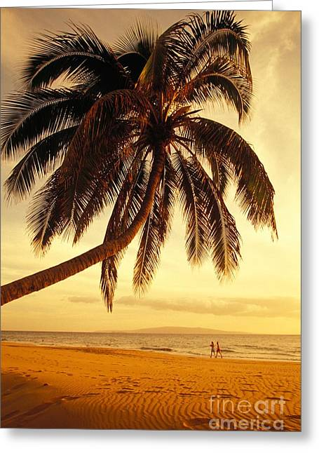 Kamaole Beach Greeting Card by Ron Dahlquist - Printscapes