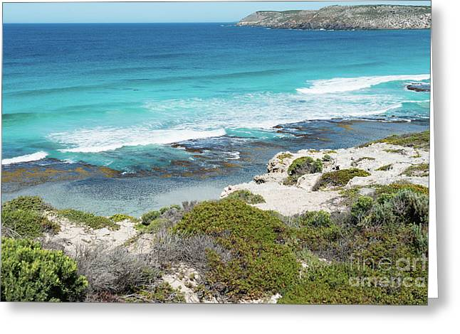 Kangaroo Island Seascape Greeting Card by Andrew Michael