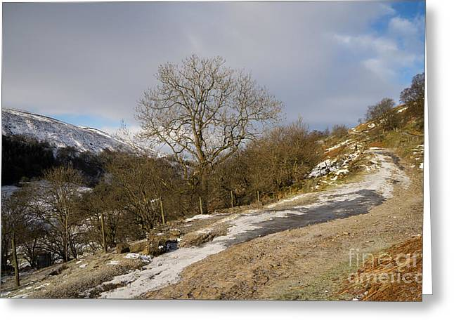 Keld To Muker Greeting Card by Nichola Denny