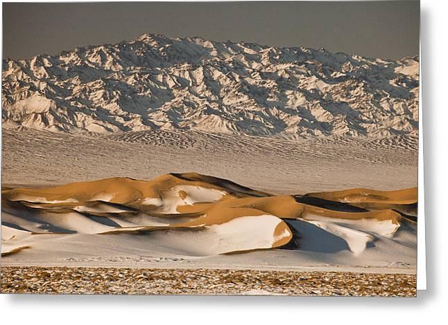 Khongor Sand Dunes In Winter Gobi Greeting Card by Colin Monteath