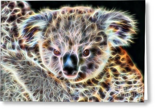 Koala Bear Greeting Card by Marvin Blaine