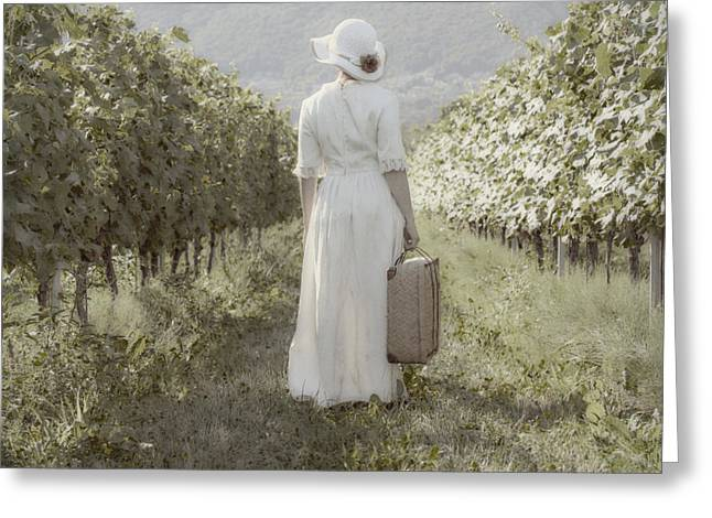 Vines Greeting Cards - Lady In Vineyard Greeting Card by Joana Kruse