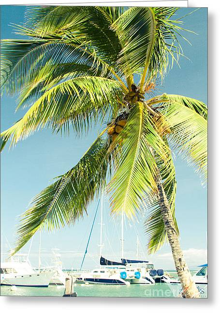 Lahaina Harbor Maui Hawaii Greeting Card
