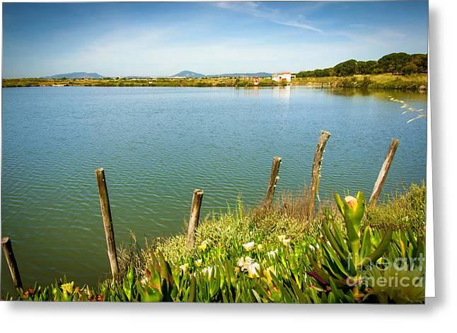 Lake And Poles Greeting Card