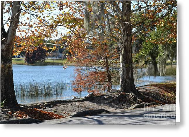 Greeting Card featuring the photograph Lake Bonny by Carol  Bradley