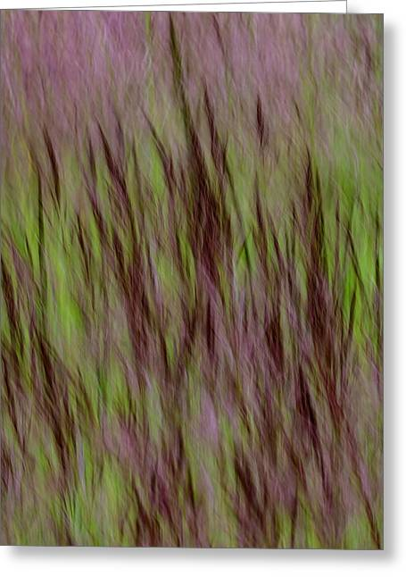 Lake Grass Greeting Card