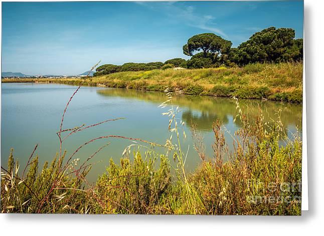 Lake Landscape Greeting Card by Carlos Caetano