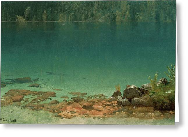 Lake Scene Greeting Card by Albert Bierstadt