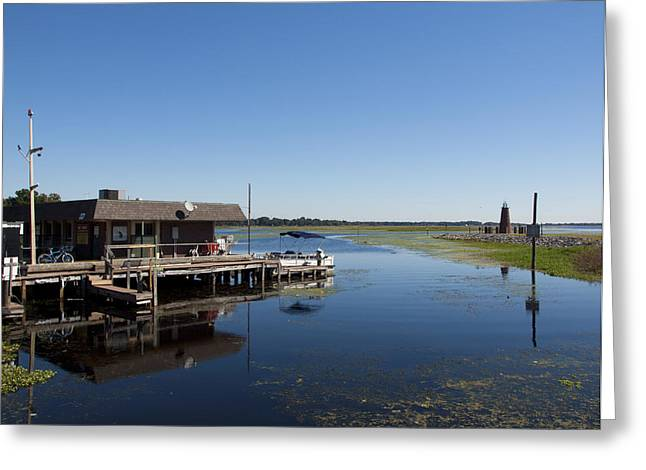 Recently Sold -  - Algae Greeting Cards - Lake Toho at Kissimmee in Florida Greeting Card by Allan  Hughes