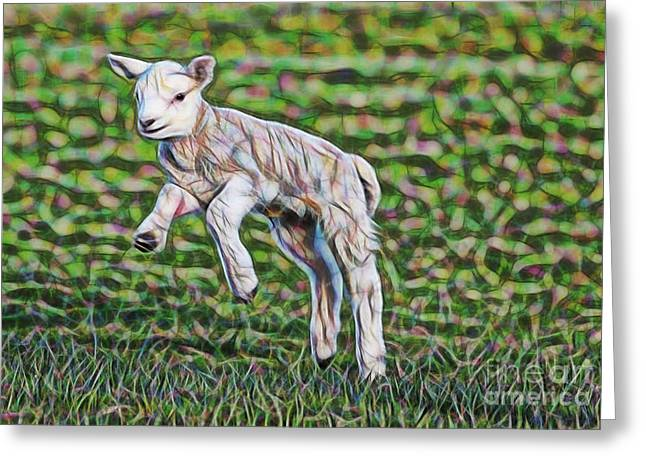 Lamb Collection Greeting Card by Marvin Blaine