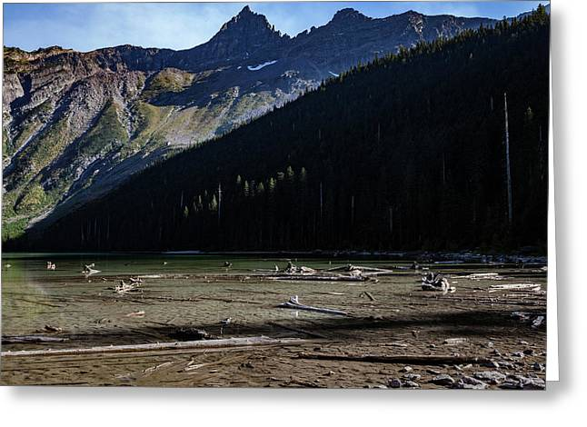 Greeting Card featuring the photograph Late Afternoon On Avalanche Lake by Lon Dittrick