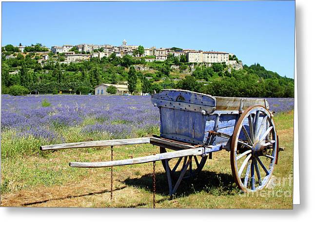 Lavender Field In Provence Greeting Card by Giancarlo Liguori