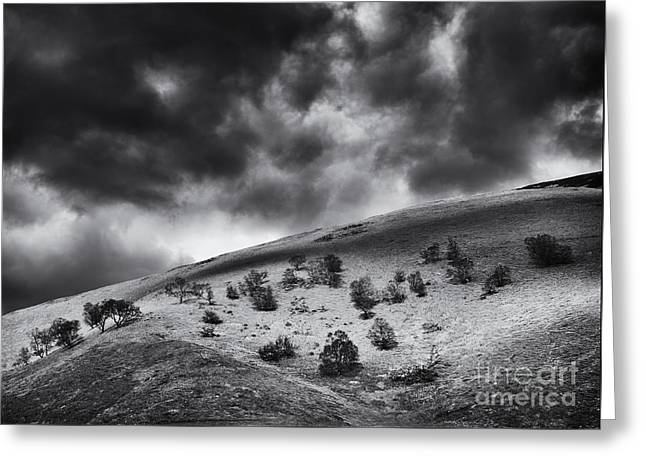 Light In Dark Spaces Greeting Card by Tim Gainey
