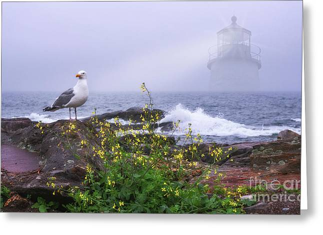Greeting Card featuring the photograph Lighthouse Overlay by Sharon Seaward