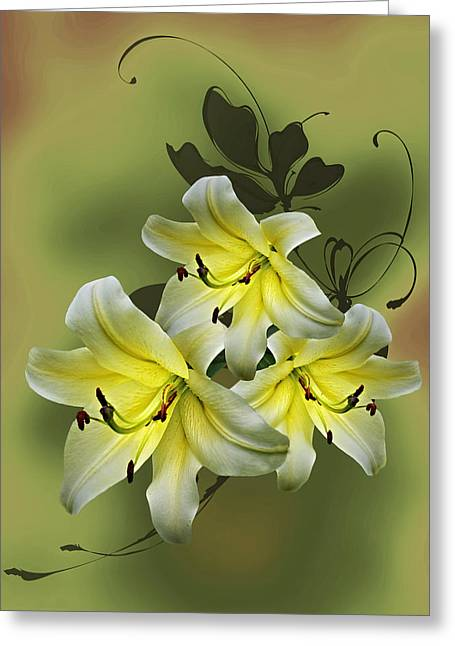 Lily Trio Greeting Card by Judy Johnson