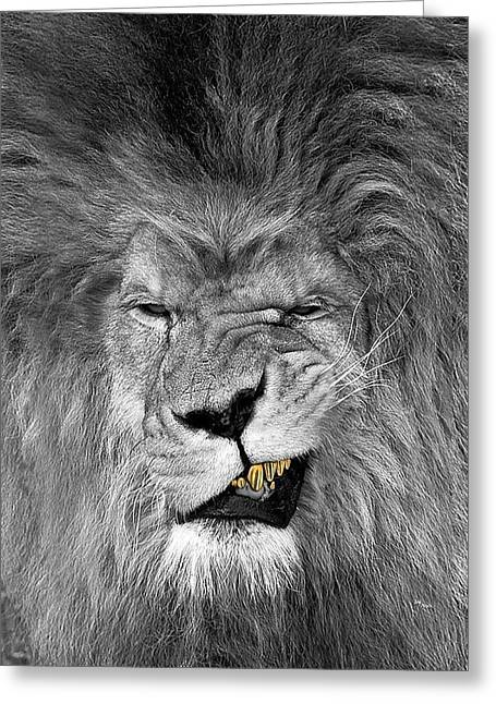 Lion King  Greeting Card by Oscar Benero Lopez