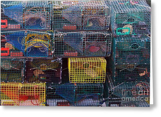 Lobster Traps Greeting Card by Linda Drown
