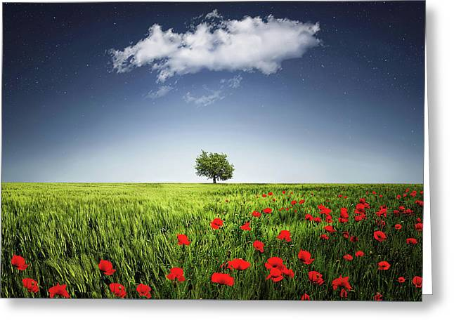 Greeting Card featuring the photograph Lone Tree A Poppies Field by Bess Hamiti