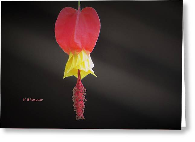 Lonely Greeting Card by B Vesseur