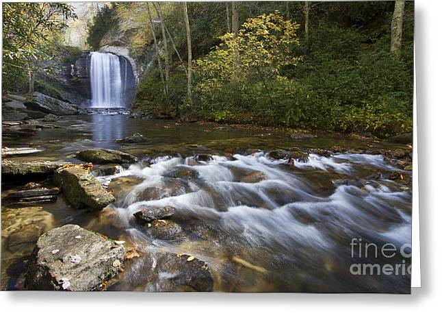 Looking Glass Falls North Carolina Greeting Card by Dustin K Ryan