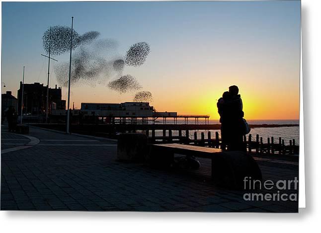 Love Birds At Sunset Greeting Card