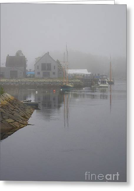 Low Tide Greeting Card by Skip Willits