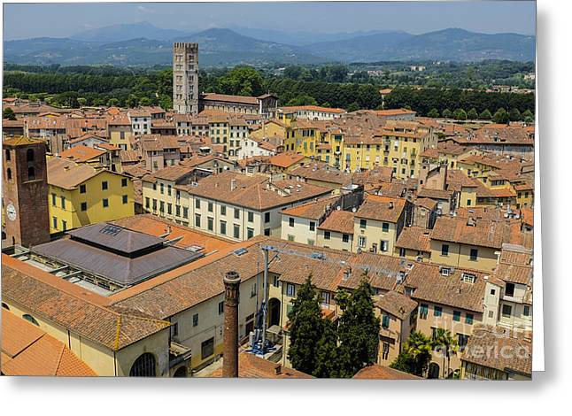 Lucca Italy Greeting Card by Edward Fielding